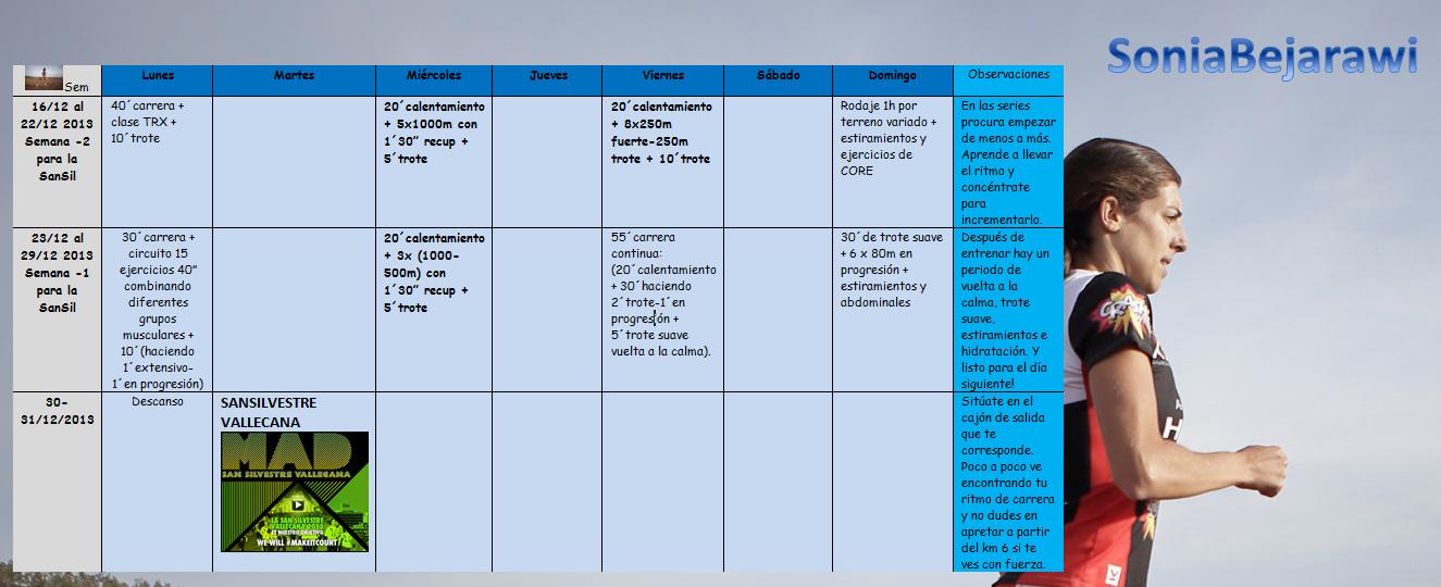 Entrenamiento 16-31 dic 2013 - Microsoft Word